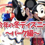【2020年冬】コロナ禍でも東京ディズニーリゾートへ遊びに行こう!〜パーク編〜