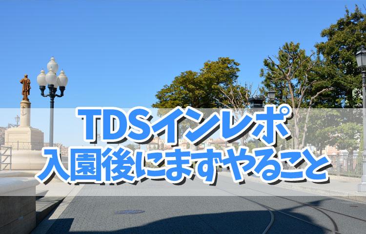 TDSインレポ①ガラガラのパークをまったり満喫♪