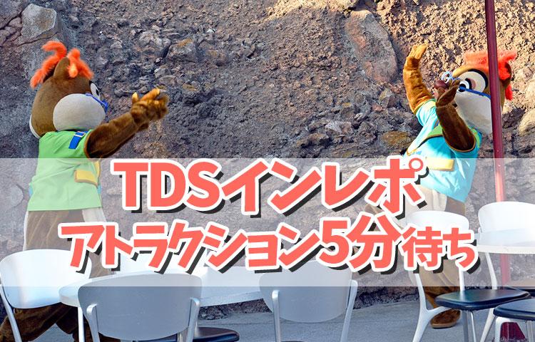 TDSインレポ②ガラガラのパークをまったり満喫♪